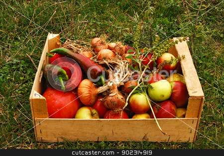 Organic fruits and vegetables stock photo, Wooden crate with organic fruits and vegetables on grass background by Aleksandar Varbenov