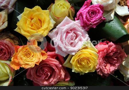 Multicolored rose bouquet stock photo, Big roses with water drops in a multicolored rose bouquet by Porto Sabbia