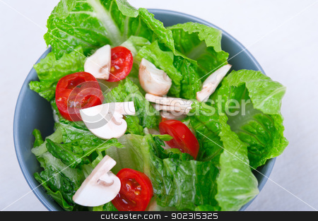 fresh mixed salad  stock photo, fresh mixed salad from the garden  by Francesco Perre
