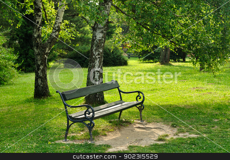 Bench in park stock photo, Wooden bench and birch in spring green park by zagart