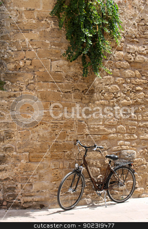 Bicycle leaning against old wall stock photo, Bicycle leaning against old wall underneath green plant. by Martin Crowdy