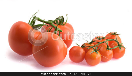 Closeup of branch of tomatoes isolated on white background stock photo, Closeup of branch of tomatoes isolated on white background by vaeenma