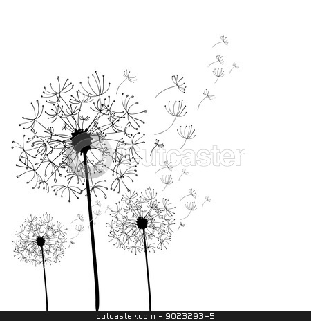 Hand drawn dandelion isolated stock vector for Dandelion coloring page