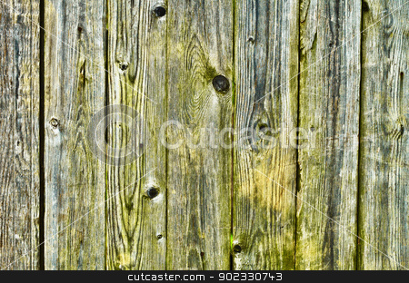Green with damp, wooden fence stock photo, The old, green with damp, wooden fence by Alexey Romanov