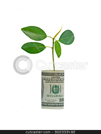 Tree growing from dollar bill stock photo, Tree growing from dollar bill by vaeenma