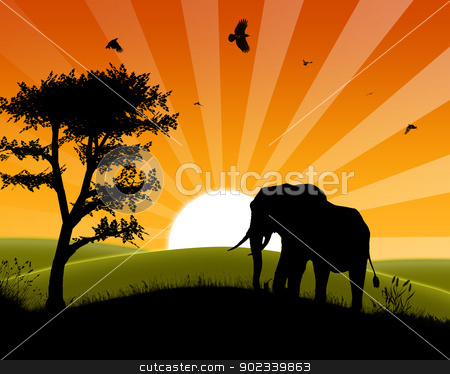 Africa Sunset - Silhouette of Elephant approaching three stock photo, Africa Sunset - Silhouette of Elephant Standing in the Sunset and apporaching three by Tomislav Konestabo