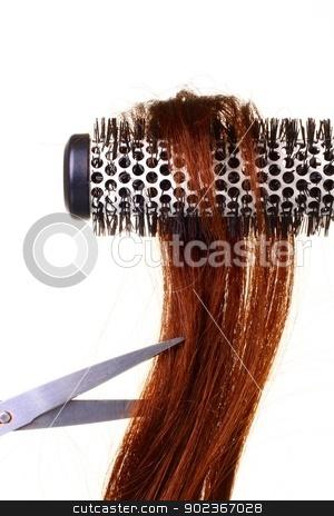 Hair stock photo, Image of hair white curler on white background by zuzanaderek