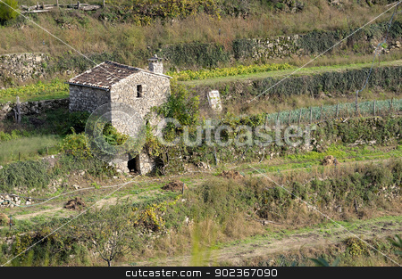 Colors of the autumn stock photo, Colors of the autumn in France in the solid mass of the Cevennes by Paire