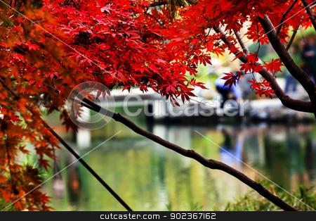 Maple Leaves Bridge West Lake Hangzhou Zhejiang China stock photo, Autumn Maple Leaves Bridge West Lake Hangzhou Zhejiang China by William Perry