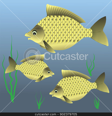 fish stock photo, colorful illustration with fish for your design by valeo5