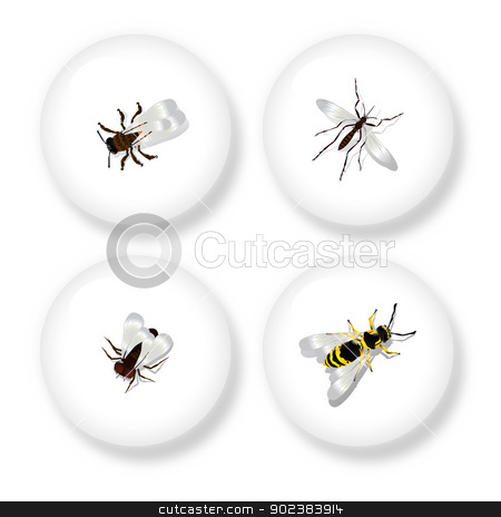 Instect button set stock vector clipart, A set of four buttons with detailed drawing of flying insects. Isolated objects on white background. by Richard Laschon