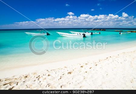 beach stock photo, beautiful blue caribbean sea beach by Vitaliy Pakhnyushchyy