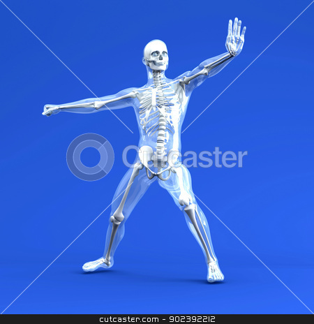 Anatomy -  Martial Arts stock photo, 3D rendered Illustration. by Michael Osterrieder