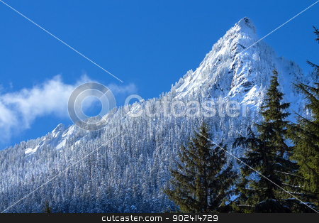 McClellan Butte Snowy Trees Snow Mountain Peak, Snoqualme Pass W stock photo, McClellan Butte Snowy Trees Snow Mountain Cascade Mountains Snoqualme Pass Washington by William Perry