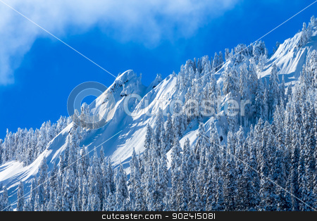 Snowy Trees McClellan Butte Snow Mountain Peak, Snoqualme Pass W stock photo, Snowy Trees McClellan Butte Snow Mountain Cascade Mountains Snoqualme Pass Washington by William Perry