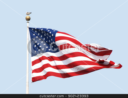 The American flag flies on a sunny day against a clear blue sky. stock photo, The American flag - the Stars and Stripes - flies on a sunny day against a clear, powder blue sky. A gull stands nonchalantly atop the flagpole. by Sarah Marchant