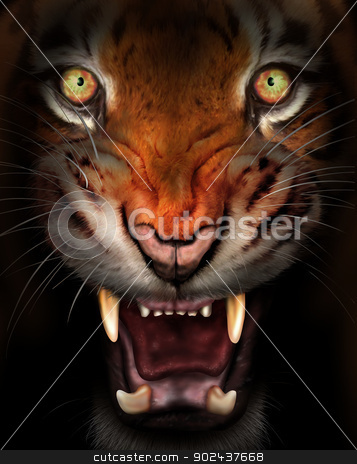 Fierce tiger stock photo, Wild tiger emerging from the dark shadows by Paul Fleet