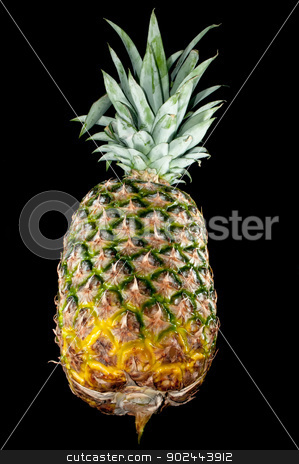 pineapple isolated on black stock photo, Pineapple fruit isolated on black background by digidreamgrafix.com