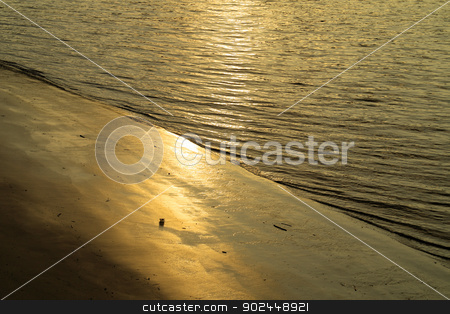 Golden Riverbank stock photo, Strong highlights from a setting sun on the banks of the River Thames by Paul Fleet
