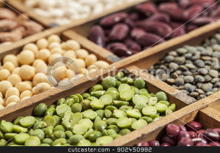 legume abstract stock photo, legumes in box abstract with a selective focus on green pea, shallow depth of field by Marek Uliasz