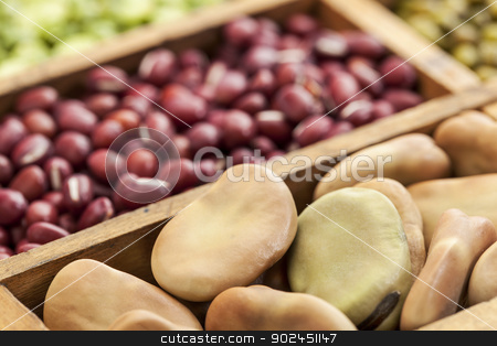 fava (broad) beans stock photo, fava (broad) beans shot with shallow depth of field with  adzuki beans and other legumes in background by Marek Uliasz