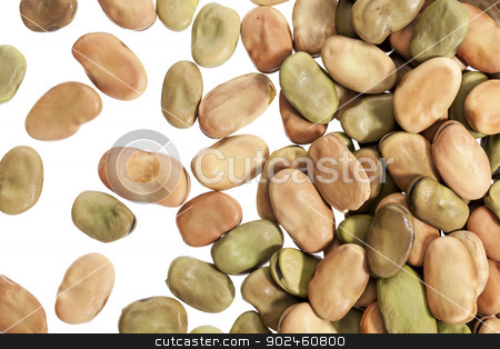 fava (broad) beans stock photo, fava (broad) beans spread on white background - top view by Marek Uliasz
