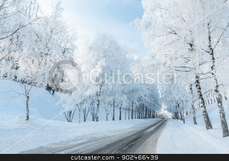 Winter road stock photo, Winter road running along the snow-covered trees. Russia, Yaroslavl by logos2012