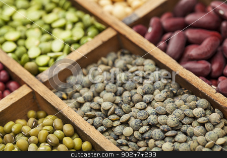 French green lentils stock photo, legumes in box abstract with a selective focus on French green lentils, shallow depth of field by Marek Uliasz