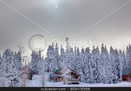 Sun Fog Snow Covered Evergreen Trees Wood Bulidngs at Snoqualme  stock photo, Sun Fog Snow Covered Trees Wood Buildings on Snow Mountain at Snoqualme Pass Washington. by William Perry