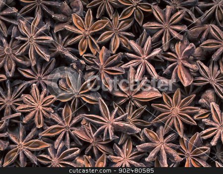 star anise stock photo, close up of star anise food background by zkruger