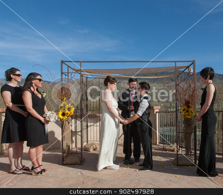 Committed Gay Couple in Ceremony stock photo, Committed young lesbian couple in civil union outdoors by Scott Griessel