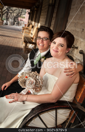 Same Sex Married Couple stock photo, Caucasian lesbian newlyweds sitting on rustic bench by Scott Griessel