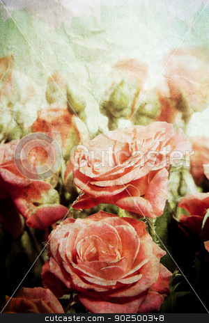 Vintage roses stock photo, Vintage distressed watercolour roses. Great as greetings card, for a wedding, love message. by Piccia Neri