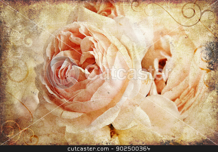Vintage rose painting stock photo, Vintage rose on canvas. Great as a greetings card or for a love message. by Piccia Neri