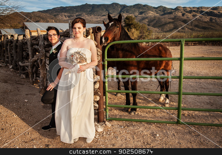 Same Sex Couple by Horse stock photo, Smiling bride with same sex groom and horse by Scott Griessel