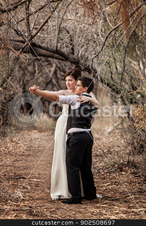 Same Sex Couple Dancing Together stock photo, Same sex European females in wedding clothes outside by Scott Griessel