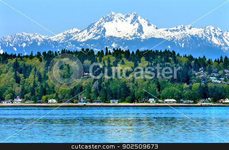 Bainbridge Island Puget Sound Mount Olympus Snow Mountain Olympi stock photo, Bainbridge Island Puget Sound Mount Olympus Snow Mountains Olympic National Park Washington State Pacific Northwest Closeup Evergreen by William Perry