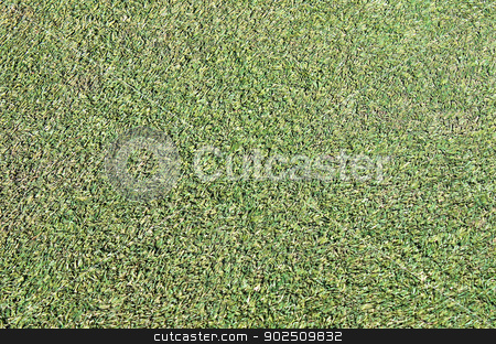 Artificial grass background stock photo, Abstract background of artificial grass or turf on sports pitch. by Martin Crowdy