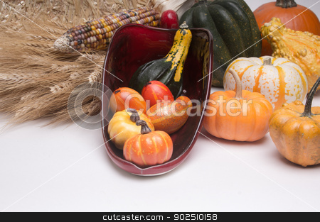 Cornucopia Harvest Time stock photo, Cornucopia of mini pumpkins, gourds, and squash with wheat stalks. Isolated on white background by Surf City Images