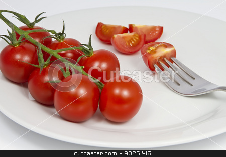 Tomatoes on the Vine stock photo, Tomatoes on the Vine on a plate with a fork by Goldcoinz