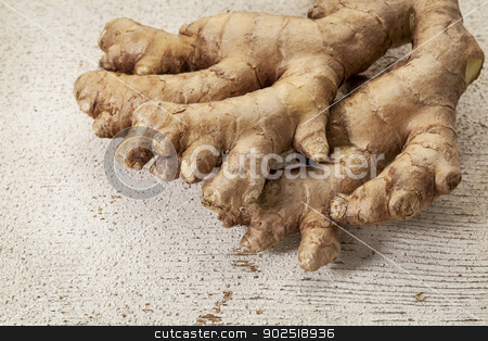 ginger root stock photo, ginger root on a rustic white painted barn wood background by Marek Uliasz