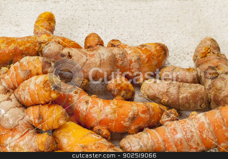 turmeric root  stock photo, turmeric root on a rustic white painted rough barn wood surface by Marek Uliasz