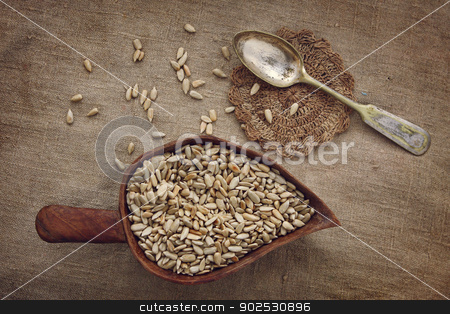 Still life with a silver spoon and sunflower seeds on homespun fabric in earth tones stock photo, Still life with a silver spoon and sunflower seeds on homespun fabric in earth tones by cococinema