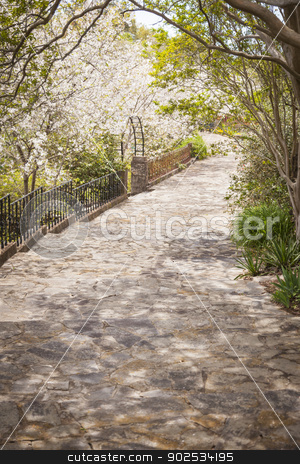Beautiful Lush Park Walkway stock photo, Beautiful Lush Park Walkway with a Variety of Foliage. by Andy Dean
