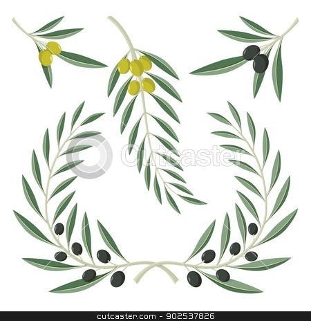 Olive branches stock vector clipart, Various olive branches and wreath isolated on white background. by fractal.gr