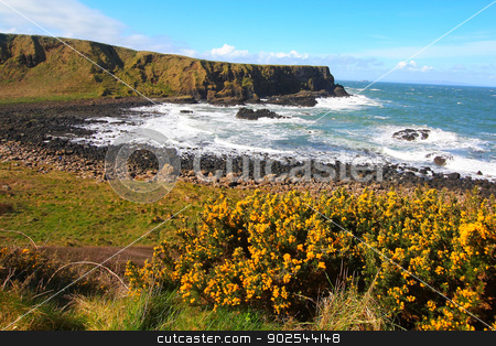 Irish coastline in Springtime  stock photo, Irish coastline in Springtime  by Juliet Photography