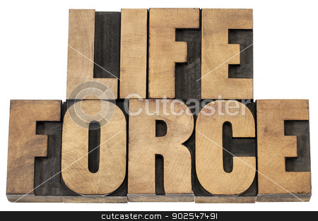 life force in wood type stock photo, life force  - isolated text in letterpress wood type printing blocks by Marek Uliasz