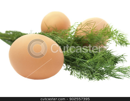 Eggs and dill stock photo, Eggs and dill isolated on white background    by Yulia Drozhchana
