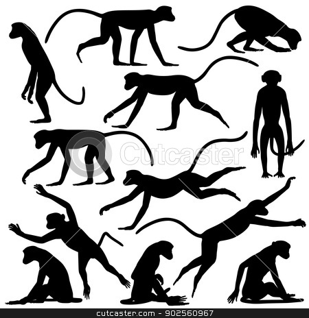 Monkey poses stock vector clipart, Set of editable vector silhouettes of langur monkeys in different poses by Robert Adrian Hillman