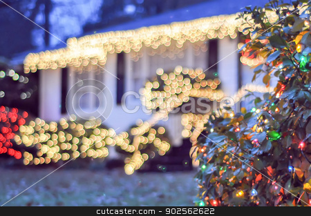 garden night scene at christmas time in the carolinas stock photo, garden night scene at christmas time in the carolinas by digidreamgrafix.com